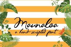 PN Maunaloa Product Image 1
