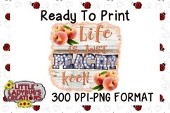 Life is Just Peachy Keen 300DPI PNG Printable Digital Design Product Image 1