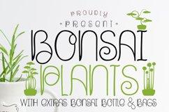 Bonsai Plants Product Image 1