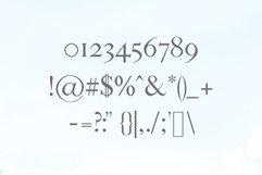 Sandover Serif Font Family Product Image 3