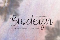 Blodeyn Handwritten Font Product Image 1