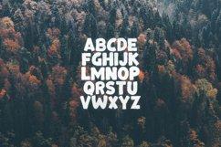 Bonfire Typeface Product Image 2