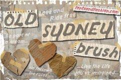 Old Sydney_Brush Product Image 1