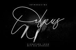 Walrus Typeface Signature Product Image 1