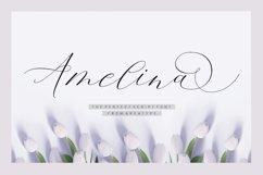 Amelina Script Product Image 1