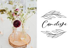 Amely Script Font and logo Product Image 3