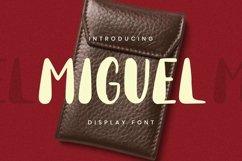 Web Font Miguel Font Product Image 1