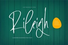 Web Font Rileigh - A Modern Signature Font Product Image 1