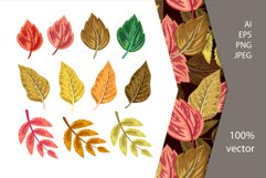 Vector Autumn Leaves Product Image 1