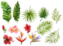 Watercolor tropical leaves and flowers. Hand drawing Product Image 3