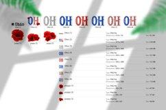 State abbreviation. USA sublimation. Ohio Product Image 5