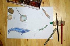 Watercolor sea animals & bonus! Product Image 6