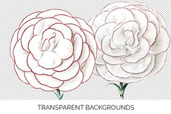 Carnation Clipart Flower Product Image 4