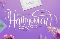 Harmonica Product Image 3