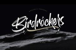 Birdrockers || Realistic Brush Font Product Image 1