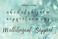 Script font Diamond Crystal Product Image 4
