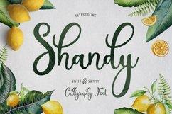 Web Font Shandy Product Image 1