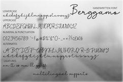 Berggamo Product Image 7