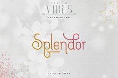 [Spring Vibes] Splendor Font Product Image 1