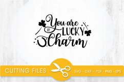 you are lucky charm svg cutting file, svg, dxf, pdf, eps Product Image 1