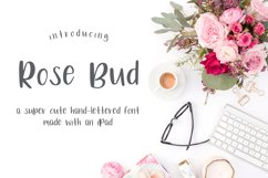 Rose Bud Hand-Lettered Fun Font Product Image 1