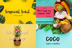 The Cute Crafter's Font Bundle Product Image 6