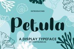 Web Font Petula Product Image 1