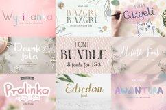 8 fonts bundle vol.1 Product Image 1
