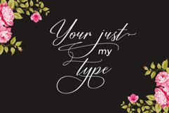 Restiany Script | Sweet Font Product Image 3