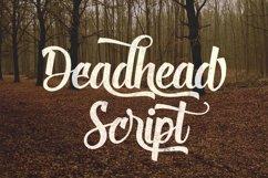 Deadhead Script Product Image 1
