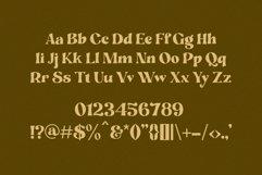 Hangier - Vintage Bold Serif Product Image 6