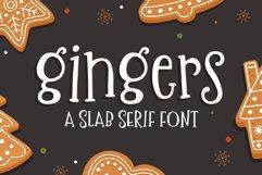 Gingers Slab Serif Font Product Image 1