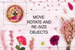 Botanical Scene Creator - Top View Product Image 5