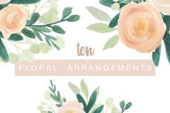 Rosa Moderna Watercolor Design Elements Product Image 4
