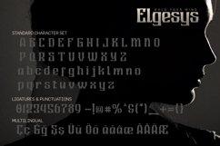 Elgesys Product Image 5
