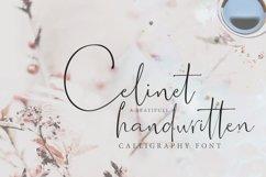 Celinet / Script font Product Image 2