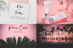 stunning script font bundle Product Image 21