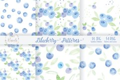 Watercolor Painting Blueberry Product Image 3