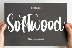 Web Font Softwood - Quirty Script Font Product Image 1