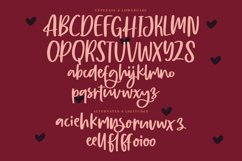 Burgundy - Beautiful Script Font Product Image 3