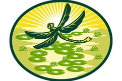 dragonfly flying with lily pads and sunburst Product Image 1