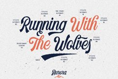 Harlend 6 fonts with extras intro Product Image 6