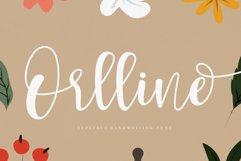 Orlline Product Image 1