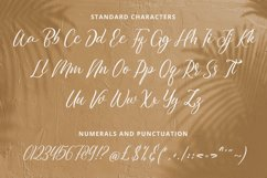Julistta - Handwritten Font Product Image 10