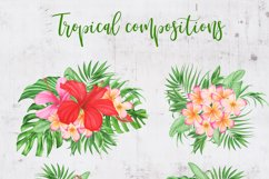 Watercolor Tropical Flowers and Leaves Compositions Product Image 2