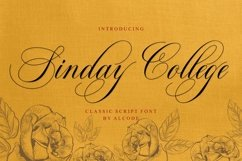 Sinday College Product Image 1