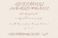 Amanda Signature Font Product Image 8