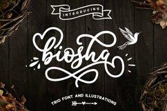 Biosha Font trio and extras Product Image 1