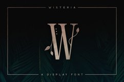 Wisteria - Display Font Product Image 1