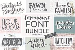 Vol. 2! BIG FARMHOUSE FONT BUNDLE - Dixie Type Co. Product Image 1